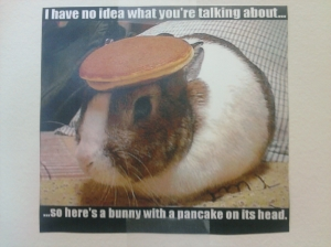Bunny and Pancake